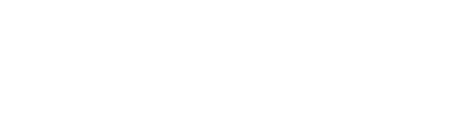 Business Direct Connect logo White